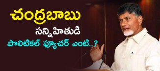 chandrababu-close-aide-political-future