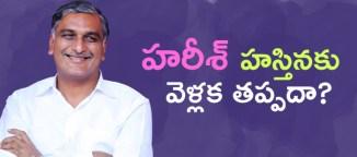 harishrao contest parlament elections