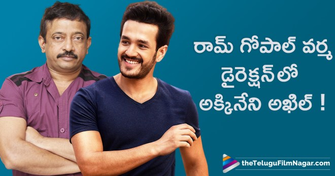 Akkineni Nagarjuna Satires On Akhil And Ram Gopal Varma Movie, Latest Telugu Film News, Nagarjuna About Akhil And Ram Gopal Varma Movie, Nagarjuna About Akhil Movie With Ram Gopal Varma, Nagarjuna Shocking Comments on Akhil & Ram Gopal Varma Movie, Telugu Filmnagar, Telugu Movies News 2018, Tollywood Movie Updates, అఖిల్ & రామ్ గోపాల్ వర్మ ల సినిమాపై నాగార్జున స్పందన
