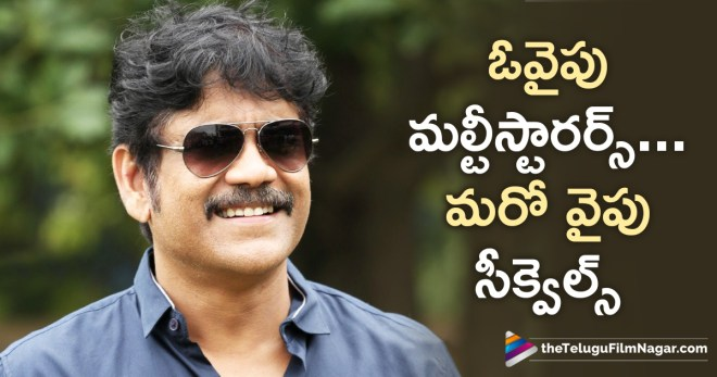 Akkineni Nagarjuna Movies in 2019, Latest Telugu Movies 2018, Nagarjuna Fans to Have a Fruitful 2019, Nagarjuna Movies Latest News, Nagarjuna Movies Latest Updates, Nagarjuna Upcoming Movies in 2019, Telugu Film Updates, Telugu Filmnagar, Tollywood Cinema Latest News
