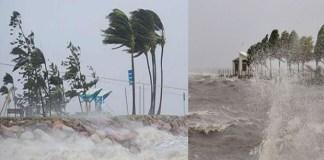 wardha cyclone effect to andhra pradesh