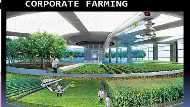 corporate farming in india