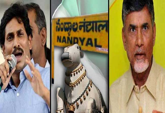Bettings Nandyala Elections