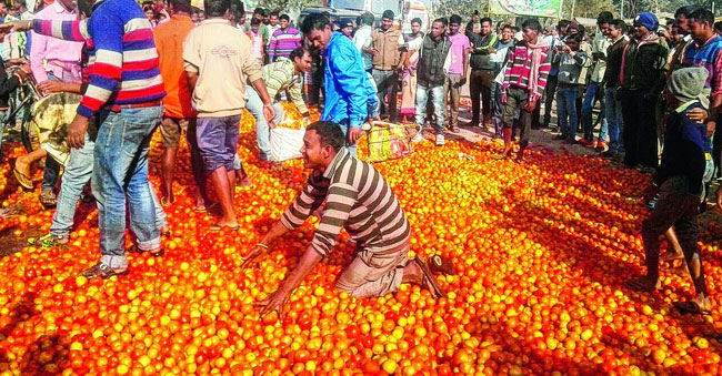 OMG! Kg Tomatoes Just Rs. 2?
