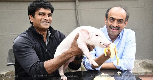 Adhugo-Ravi-Babu-Brings-Pig