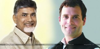 CBN To Meet Rahul For Anti BJP Alliance