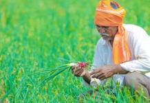 Good News to Telangana Farmers