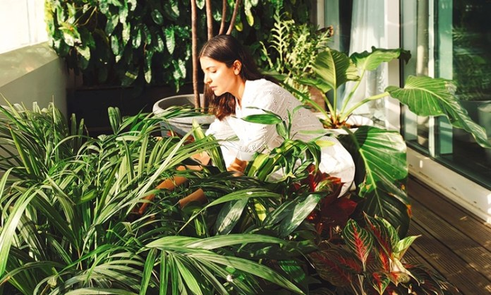 Anushka Sharma spends time with her balcony 'buddies'