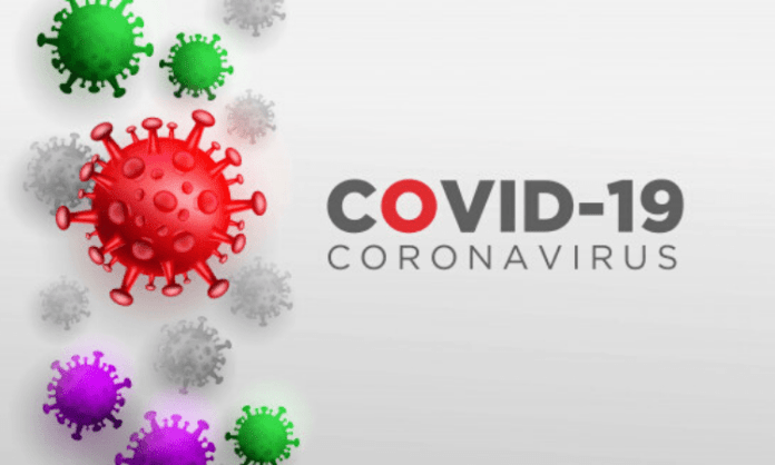 Universal testing may help reduce Covid-19 infection: JHU study