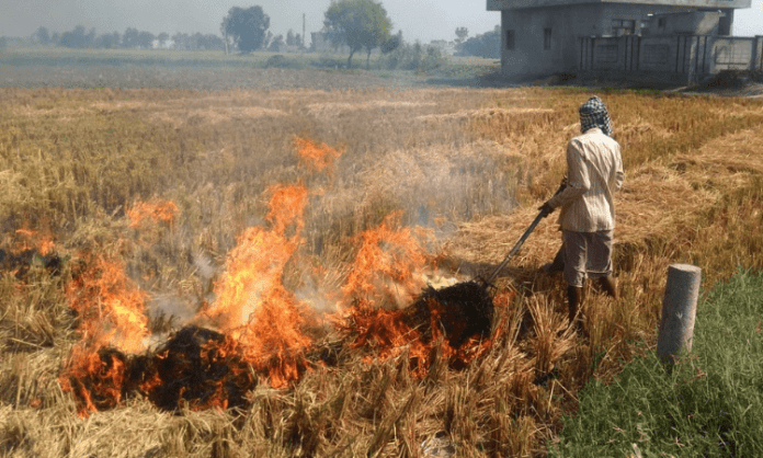 Stubble burning contributing 40% to Delhi's pollution