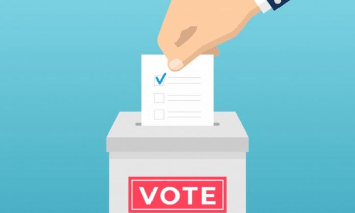 K'taka bypolls: Voting for 2 seats underway
