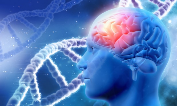 Brain cancer linked to tissue healing: Researchers