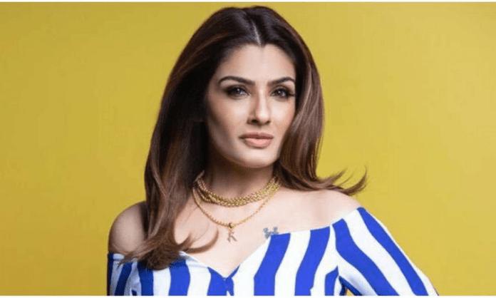 Raveena Tandon, Sanjay Dutt open up KGF: Chapter 2 teaser response