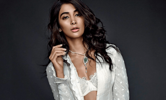 Pooja Hegde tests negative for Covid-19