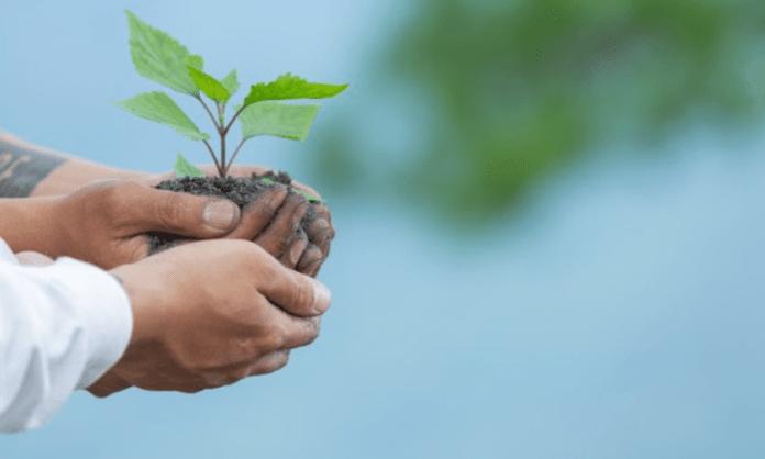 Pratik Gandhi, Malika Arora among celebs backing awareness drive on World Environment Day