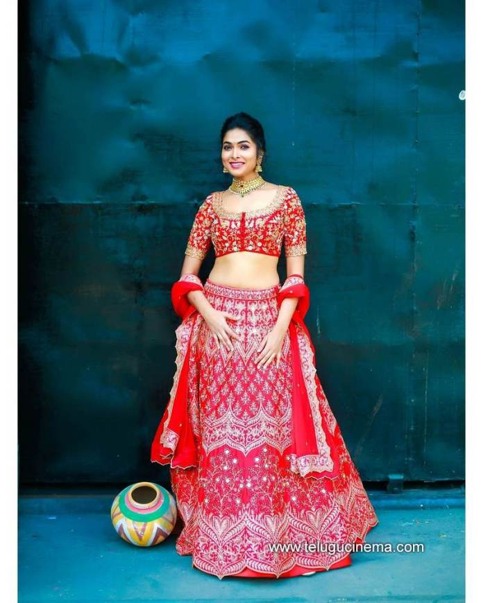 Divi Vadthya's traditional looks