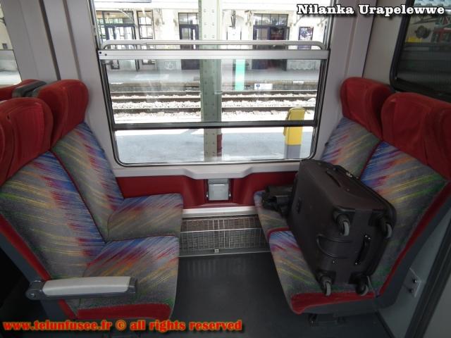 nilanka-urapelewwe-blog-voyage-france-chamonix-mont-blanc-travel-blog-telunfusee-23 (2)