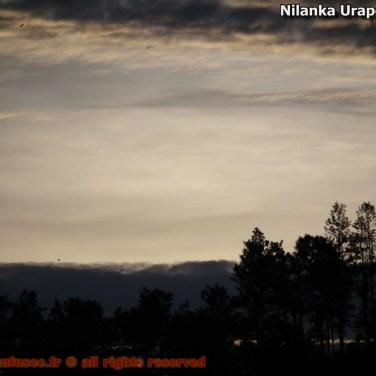 nilanka-urapelewwe-blog-voyage-sri-lanka-welimada-travel-blog-telunfusee-60