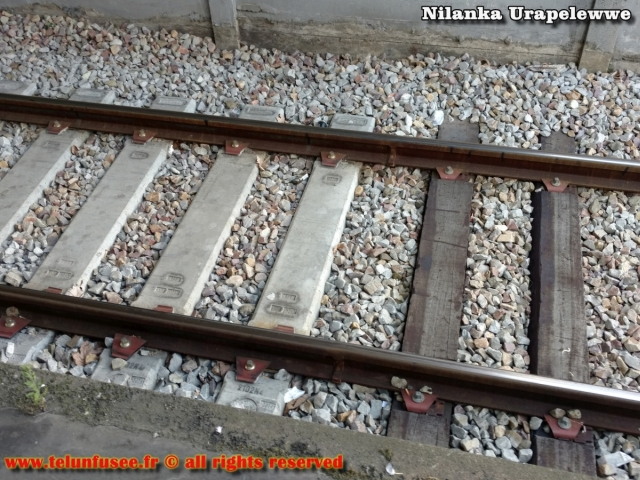nilanka-urapelewwe-blog-voyage-europe-train-travel-blog-telunfusee-3