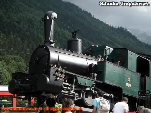 nilanka-urapelewwe-blog-voyage-france-chamonix-mont-blanc-travel-blog-telunfusee-20