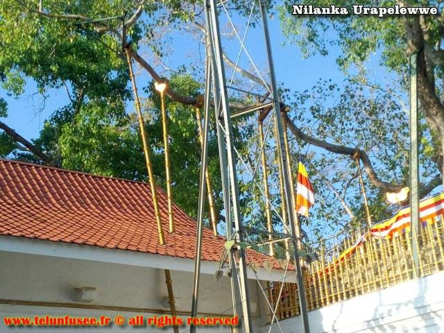 nilanka-urapelewwe-blog-voyage-sri-lanka-anuradhapura-travel-blog-telunfusee-12