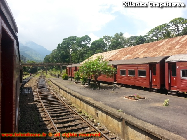 nilanka-urapelewwe-blog-voyage-sri-lanka-badulla-travel-blog-telunfusee-4
