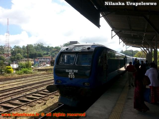 nilanka-urapelewwe-blog-voyage-sri-lanka-bandarawela-travel-blog-telunfusee-11