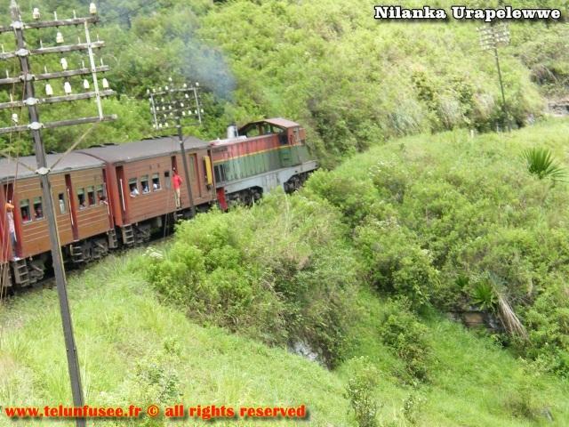 nilanka-urapelewwe-blog-voyage-sri-lanka-bandarawela-travel-blog-telunfusee-13