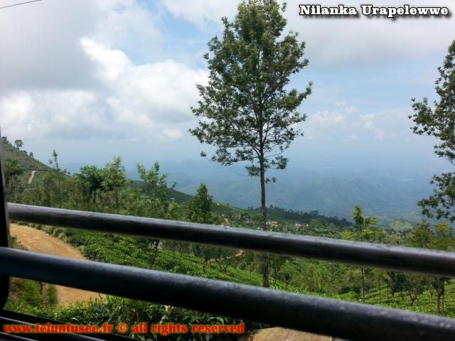nilanka-urapelewwe-blog-voyage-sri-lanka-haputale-travel-blog-telunfusee-0