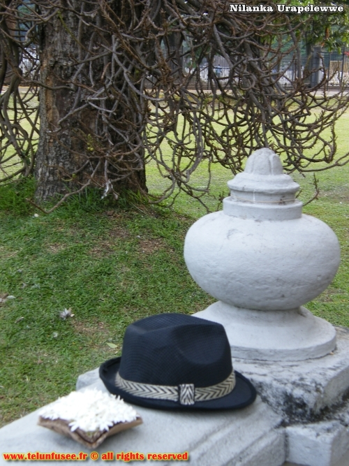 nilanka-urapelewwe-blog-voyage-sri-lanka-kandy-travel-blog-telunfusee-7