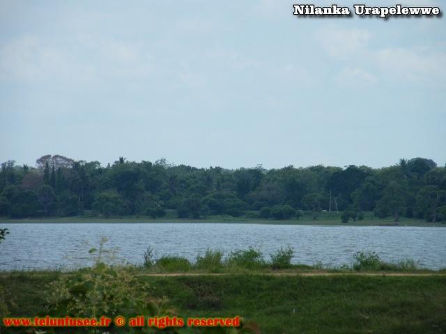 nilanka-urapelewwe-blog-voyage-sri-lanka-mihintale-travel-blog-telunfusee-3