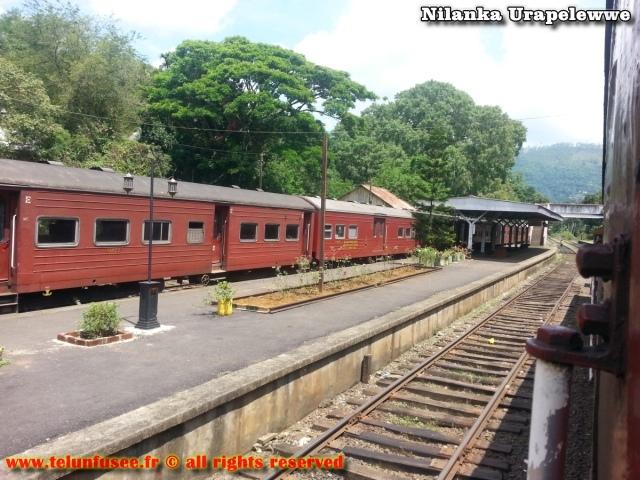nilanka-urapelewwe-blog-voyage-sri-lanka-trains-travel-blog-telunfusee-5