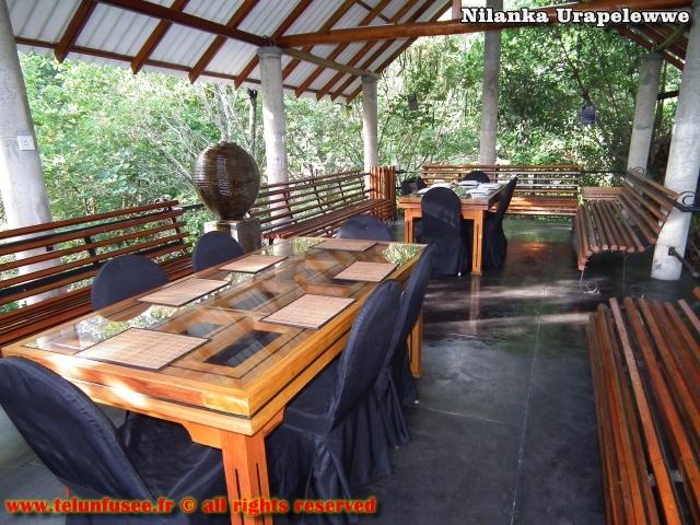 nilanka-urapelewwe-blog-voyage-sri-lanka-welimada-travel-blog-telunfusee-8
