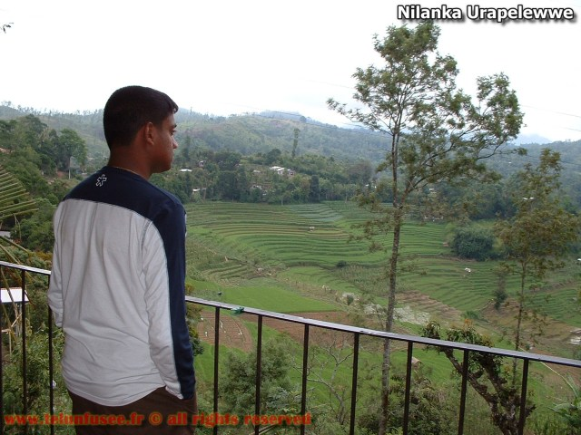 nilanka-urapelewwe-blog-voyage-sri-lanka-welimada-travel-blog-telunfusee-9