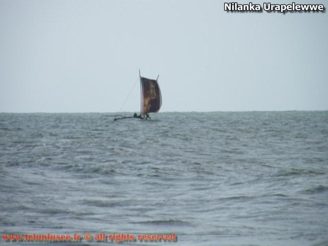 nilanka-urapelewwe-blog-voyage-telunfusee-gampaha-110-srilanka-travel-blog
