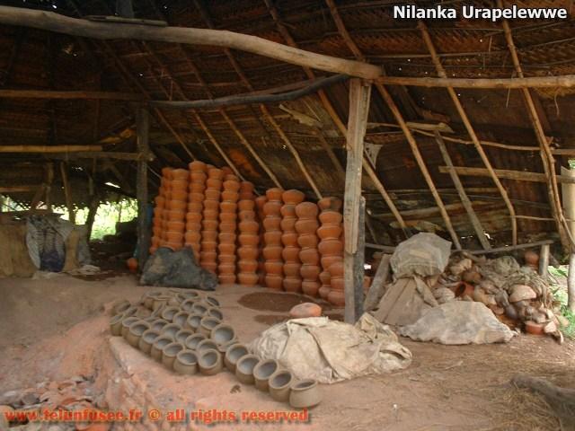 nilanka-urapelewwe-blog-voyage-telunfusee-gampaha-srilanka-travel-blog-02