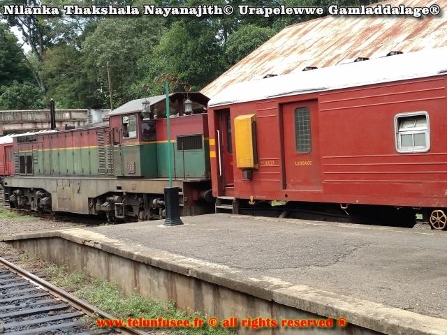 nilanka-urapelewwe-blog-de-voyage-sri-lanka-2017-travel-blog-telunfusee-3