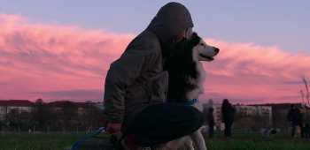dogs documentário netflix
