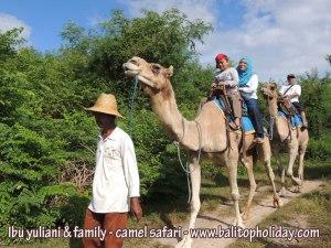 camel-safari-di-bali
