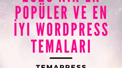 2020'nin En Popüler ve En İyi WordPress Temaları