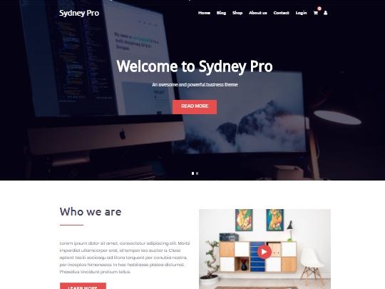 Sydney pro teması
