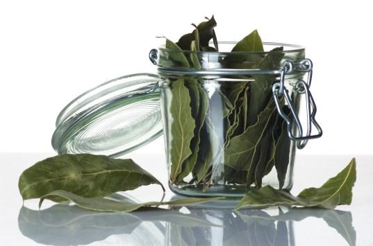 Jar of dried Laurel leaves