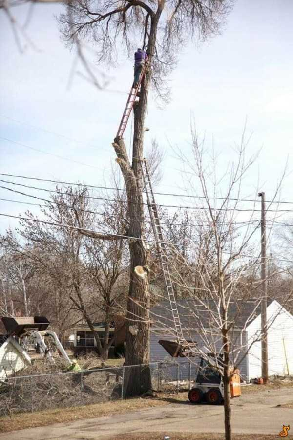 safety-measures-fails-18