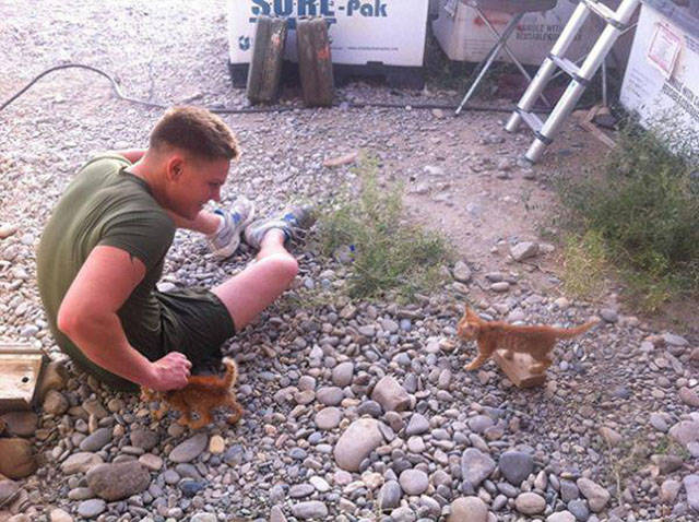 soldiers_share_some_bonding_time_with_cats_640_02