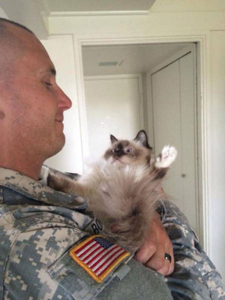 soldiers_share_some_bonding_time_with_cats_640_03