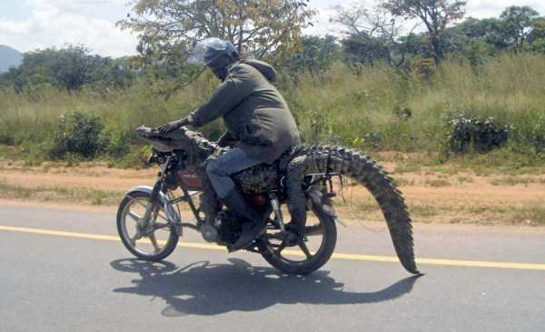 meanwhile-in-africa-32
