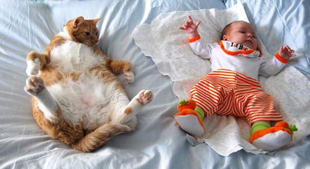 01-ほっこり20枚! 赤ちゃんとネコの仲良しな風景