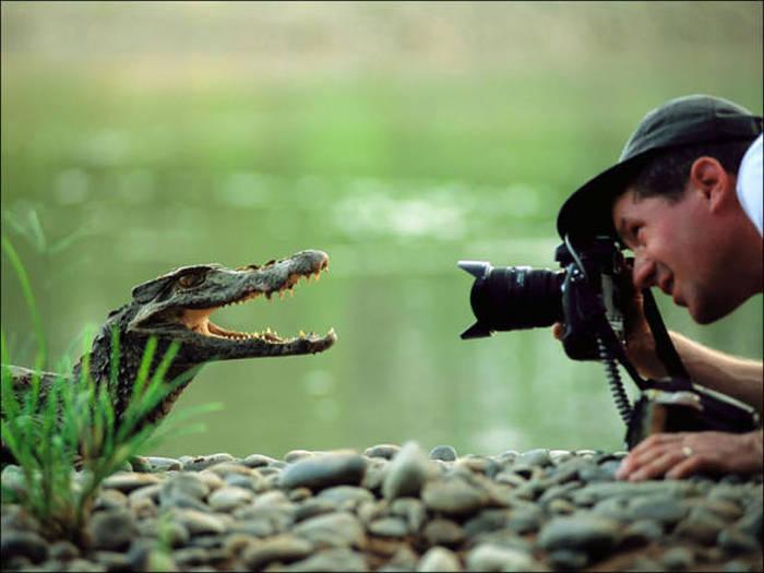 wildlife_photographers_09