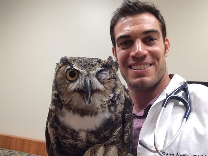 hottest-vet-pet-doctor-evan-antin-california-358__700