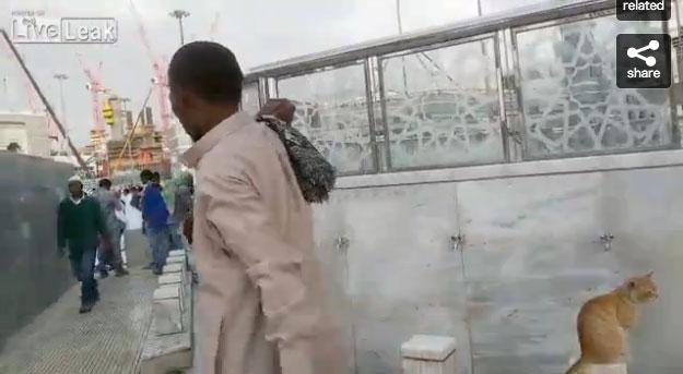 02-メッカで見かけた優しい光景。水場で水を飲みたそうにしているネコに水を飲ませる心優しい男性
